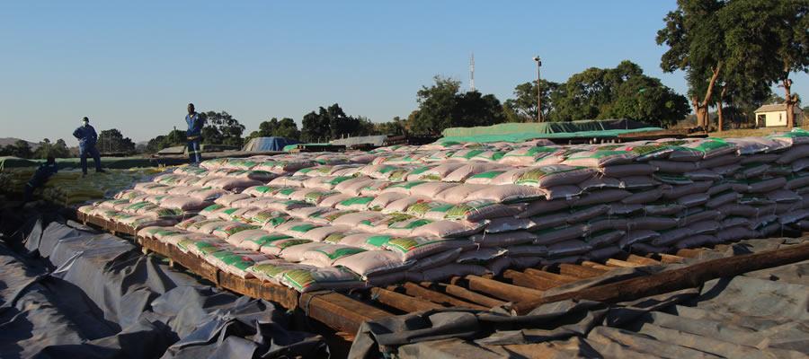 GMB starts receiving wheat