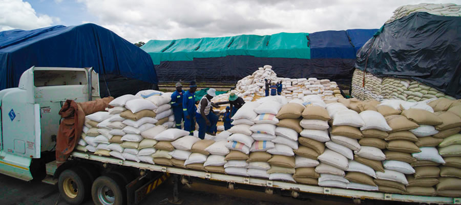Nation on course to achieve maize target